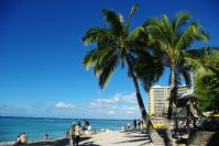 Am berühmten Waikiki-Beach...