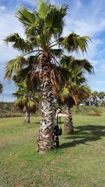 Endlich da-unter Palmen in Port Elisabeth