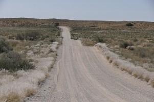 Achterbahn in der Wüste. Bei der mehr als 50 Kilometer langen Dünenstrecke geht es auf und ab.