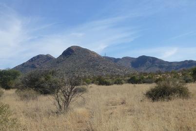 Die Landschaft südlich von Windhoek ist noch ursprünglich. Weiter südlich ist das Land oft kahl, da das Gras wegen der intensiven landwirtschaftlichen Nutzung nicht nachwachsen kann