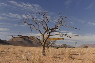 Die Koiimasis-Ranch kann man nicht verfehlen