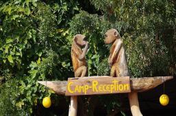 Originell - die Rezeption der Koiimasis-Ranch. Affen haben wir auf dem Gelände nicht gesehen.