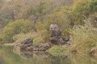 Der Flusswächter am Kavango River