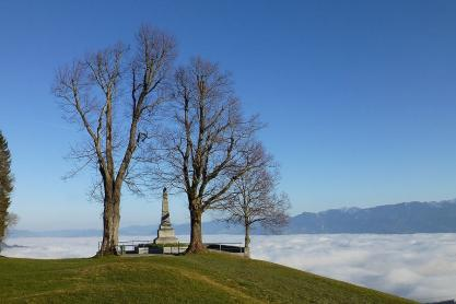 Im Rheintal bei Bregenz wabert dicker Nebel.