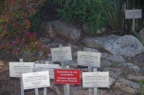 ... wo es aber auch ein Mahnmal für ausgestorbene Pflanzenarten gibt.