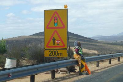 Ampelfrauchen am Cape-Namibia Highway