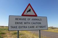Am Straßenrand wird immer wieder vor Wildwechsel gewarnt. Eine Fahrt im Dunkeln ist gefährlich...