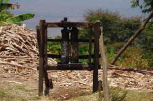 traditionelle Zuckerohrpresse. An die Zahnräder gehören noch zwei Hebel. Damit wird die Pflanze durch die Öffnung gepresst und der Saft aufgefangen. Oft entsteht daraus Hochprozentiger.