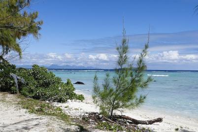 Traumstrände, Traumwetter, Mauritius ist eine Reise wert.