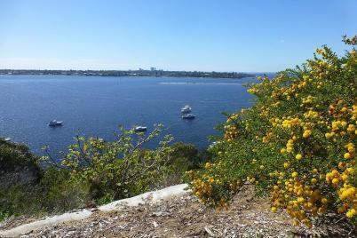 Die Radtour von Fremantle nach Perth führte uns am Swan River entlang...