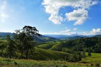 Saftig grüne Wiesen bestimmen das Bild im Barrington Nationalpark