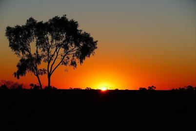... um den Sonnenuntergang im Outback zu genießen.