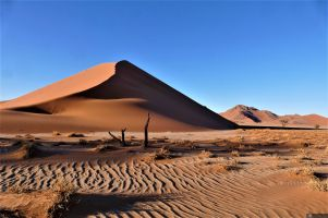 L008 Düne 38 im Sossusvlei, Namibia