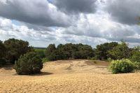 Wie ein großer Sandkasten – die Binnendüne von Storkow.