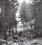 Zerstörte polnische Panzerkolonne.