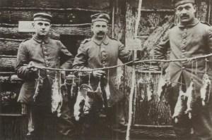 Rattenjagd im Schützengraben