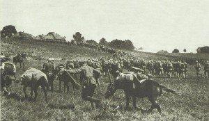 Deutsche Truppen auf dem Marsch nach Przemysl