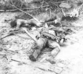 eichen von zwei Fallschirmjäger der 1. Japanischen Überfall-Brigade