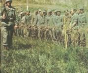 deutsche Kriegsgefangene im Westen