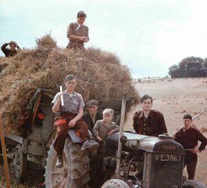 Deutsche Kriegsgefangene als Helfer bei der Heueernte