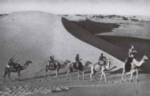 Italienische Sahara-Truppen auf Kamelen