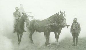 Beatmungsgeräte für Pferde
