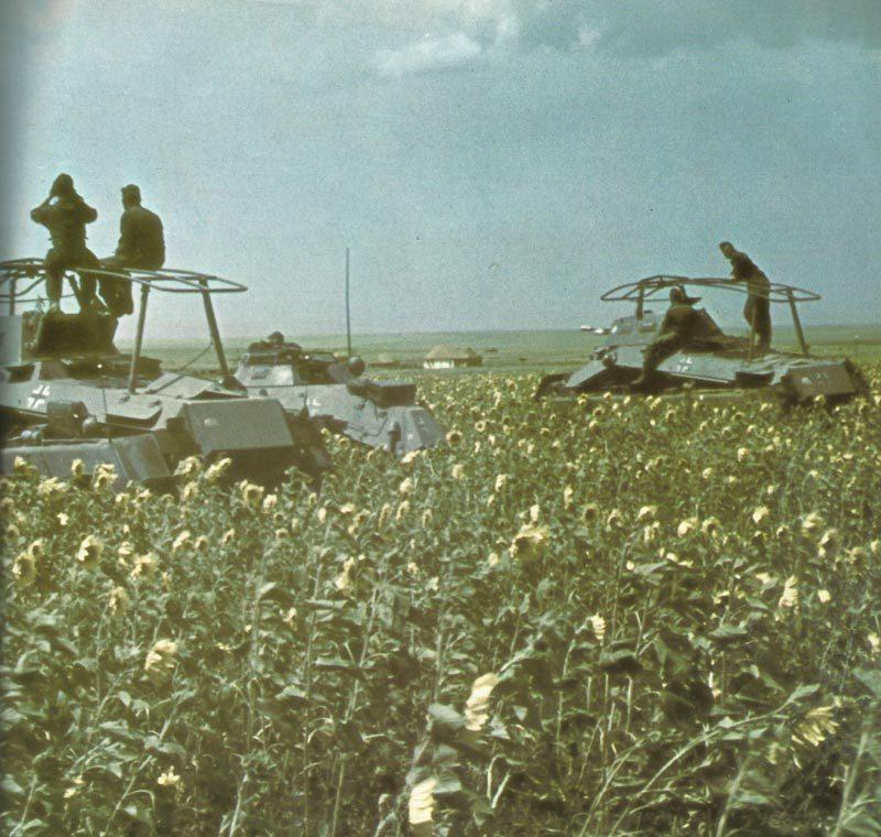 Deutsche Panzerspähwagen in der Donezsteppe
