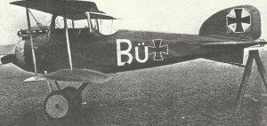 Albatros D I