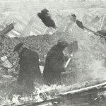 Kriegstagebuch 19. Oktober 1941