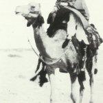 Kriegstagebuch 2. Januar 1917