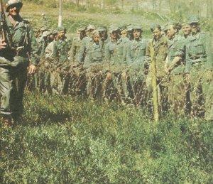 Wehrmachtsangehörige als Kriegsgefangene der US-Armee