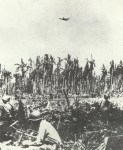 Dauntless-Sturzkampfbomber der 'Cactus Air Force'