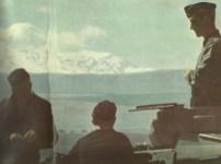 Panzer am Kaukasus
