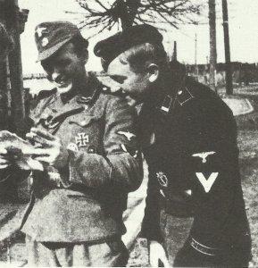Unteroffiziere der Wiking-Division 1943