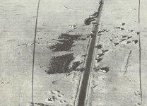 Gefangengenommene Achsen-Truppen außerhalb von Bardia