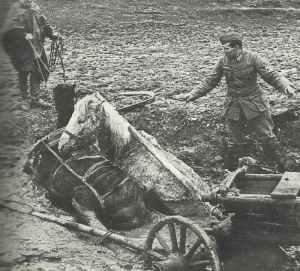 unvorstellbaren Bedingungen während des Frühlingstauwetters und Herbstregens an der Ostfront