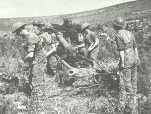 britisches 25-Pfünder-Feldgeschütz