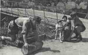 Deutsche Brückensprengung beim Rückzug aus Süd-Italien