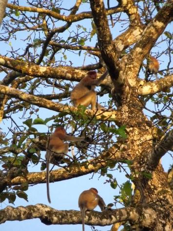 Familie im Baum