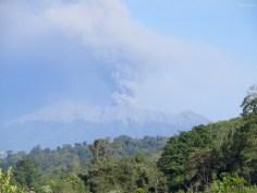 Vulkan Raung spukt Asche! Und das nur 40km entfernt.