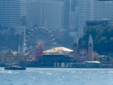 Sydneys Luna Park