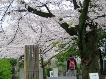 Auf den Holzplanken stehen die Namen der Verstorbenen in dem Grab