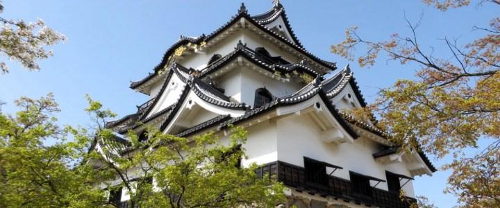 Kyotos Wunder