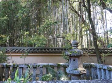 Banbus im Zen-Garten