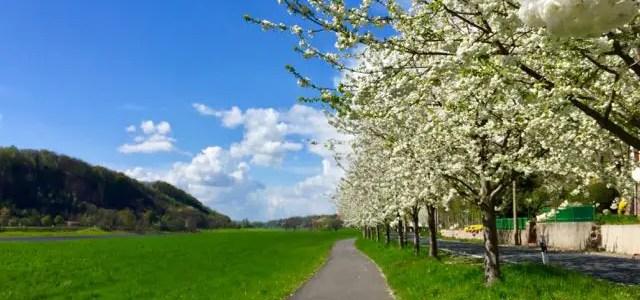 Elbe-Radtour 2: April ist ein komplexer Reisemonat