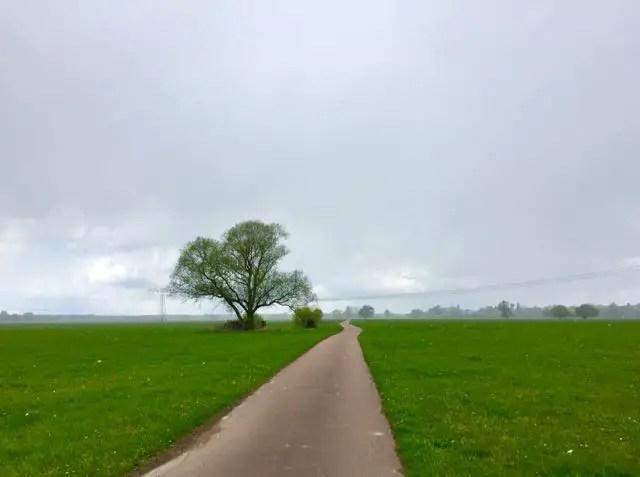 Elbe-Radtour-Wittenberg-Schnee