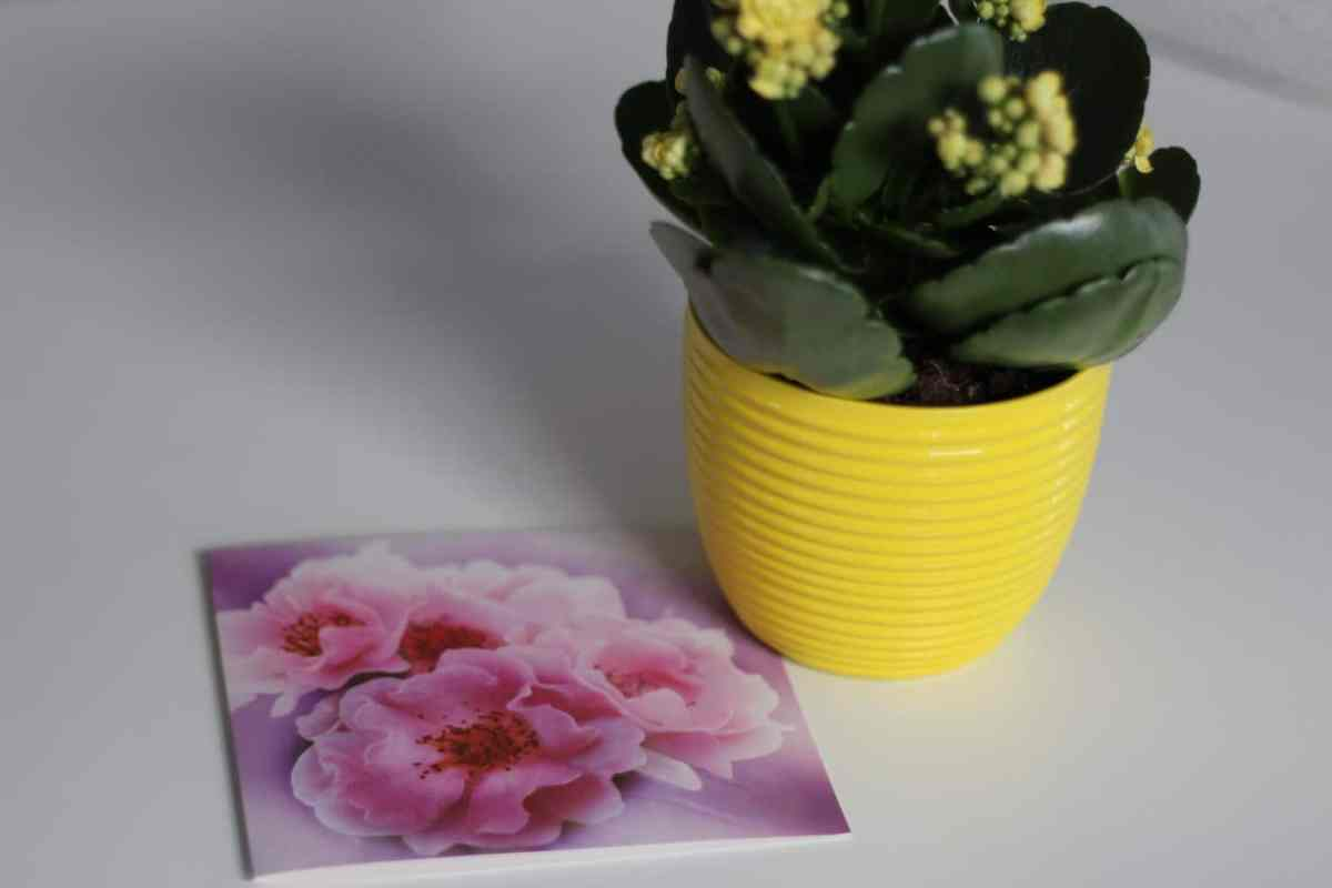 flowers and card