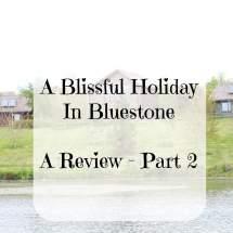 bluestone review 2