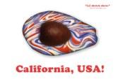 California, USA! (Comedy Show Recap)
