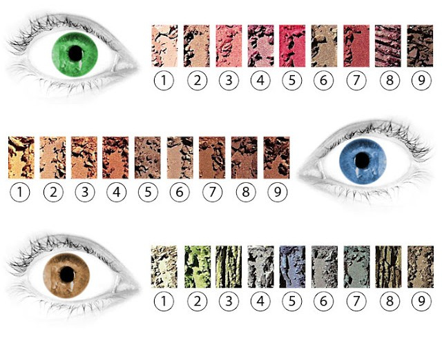 Makeup Colour Wheel For Eyes How To Pick Eyeshadow For Your Eye Color Beth Bender Beauty